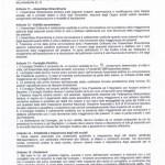 STATUTO 2011-page-004